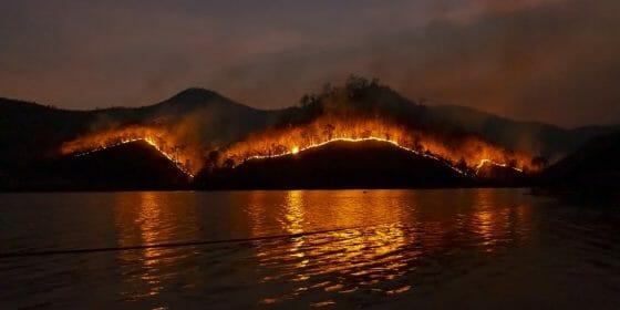 wildfire statistics